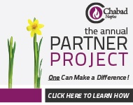 Annual Partner Project